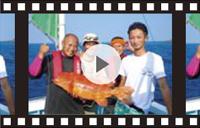 高級魚「アカジョウ」釣れました!